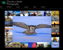 Theodore Smith Photography
